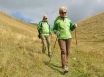 Walking downhill increases risk of falls in older
