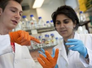UK gives go ahead to modify human embryo