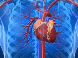More Australians to get heart illnesses