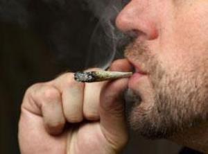 Cannabis shrinks brain