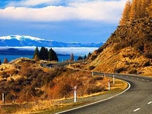 New Zealand,voluntary bonding scheme,nurse,midwife