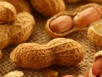 Potential peanut allergy cure: researchers
