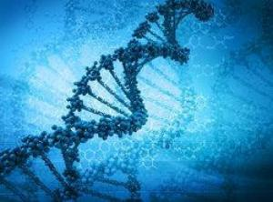 First DNA-based colon cancer test approved