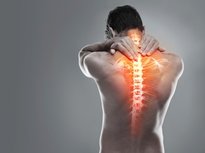 Grant to support spinal cord injury research