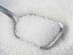 Enzyme in brain drives craving for sugar
