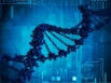 Most want DNA testing for disease
