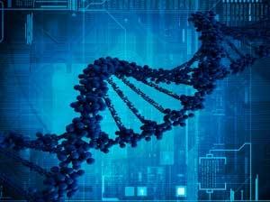 Genes determine AIDS vaccine effectiveness