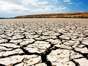 Aust must act on climate change: doctors
