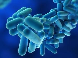 Legionella in Qld hospital water supply
