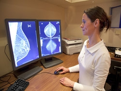 Progesterone could treat breast cancer